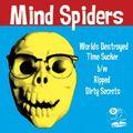 Mindspider3x3lores